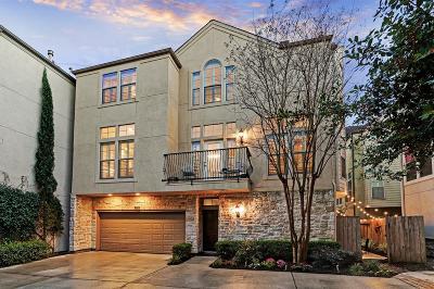 Houston Single Family Home For Sale: 225 Birdsall Street