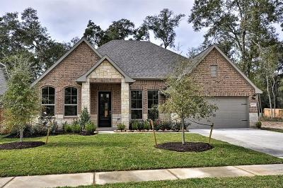 Tomball Single Family Home For Sale: 25319 Pinyon Hill Trail
