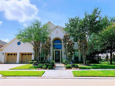Sugar Land Single Family Home For Sale: 227 Chatham Avenue