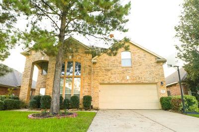 Houston Single Family Home For Sale: 6723 Beacon Manor Lane