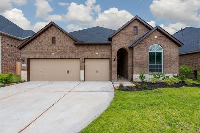 Conroe Single Family Home For Sale: 329 Park