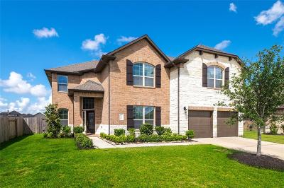 Katy Single Family Home For Sale: 3210 Emerald Valley Drive