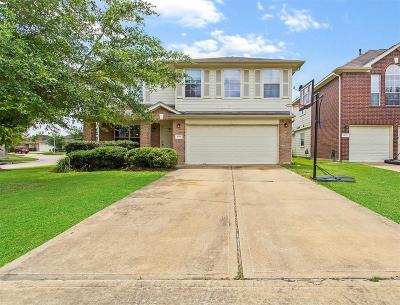 Single Family Home For Sale: 6019 Deep South Drive