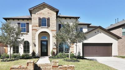 Friendswood Single Family Home For Sale: 808 Sage Way Lane