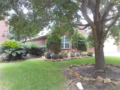 Dickinson Single Family Home For Sale: 3006 Meadow Bay Drive