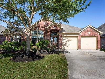 League City Single Family Home For Sale: 519 Stoneridge Terrace Lane