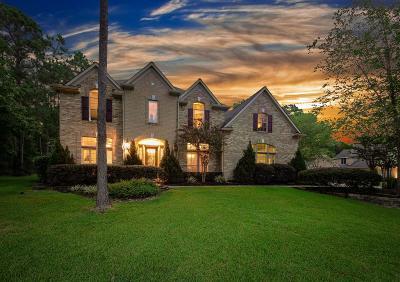 Magnolia Single Family Home For Sale: 12018 Oak Haven E