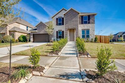 Missouri City Single Family Home For Sale: 9715 Iberia Way