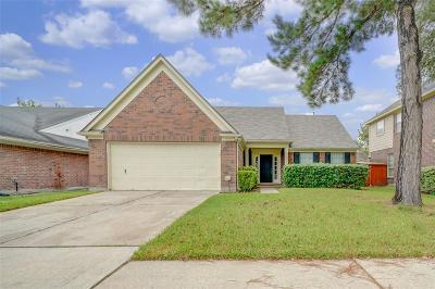 Houston Single Family Home For Sale: 1610 Plumwood Drive