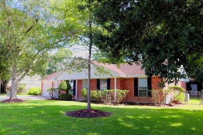 Dickinson Single Family Home For Sale: 5018 Briarbrook Drive