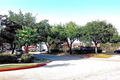 Houston Multi Family Home For Sale: 12643 Ashford Meadow Dr Drive #2