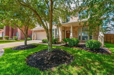 Manvel Single Family Home For Sale: 22 Terra Bella Drive