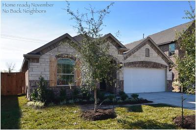 League City Single Family Home For Sale: 2625 Bethel Springs Lane