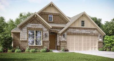 Conroe TX Single Family Home For Sale: $244,490