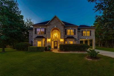 Conroe Single Family Home For Sale: 13247 Summer Rose Lane