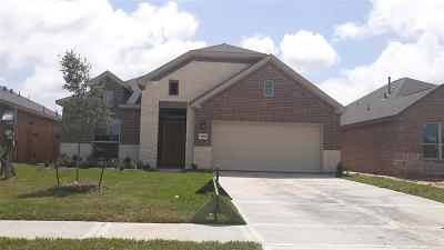 Texas City Single Family Home For Sale: 3218 Hatteras Drive