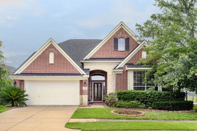 Sugar Land Single Family Home For Sale: 14335 Sandy Ripple Court