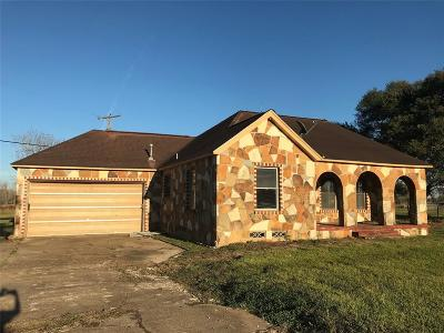 Alvin Single Family Home For Sale: 18911 Highway 35