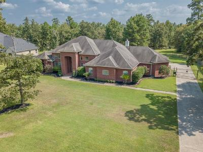 Montgomery Single Family Home For Sale: 15569 Zoe Loop Drive