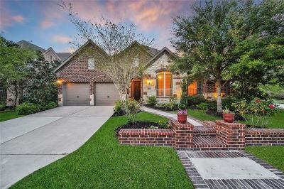 Cypress Single Family Home For Sale: 19602 Star Haven Drive