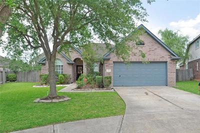 Sugar Land Single Family Home For Sale: 4719 Mason Court