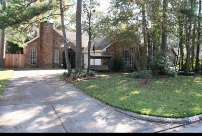 Houston Single Family Home For Sale: 3030 Creek Manor Drive