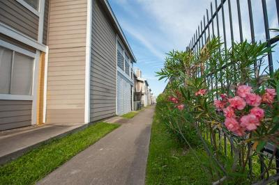 Houston Multi Family Home For Sale: 12618 Ashford Meadow Drive #4