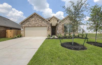 Rosenberg Single Family Home For Sale: 2318 Cherrington Woods Lane