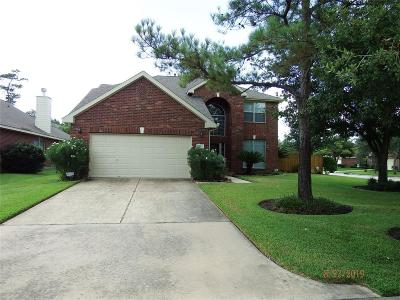 Tomball Single Family Home For Sale: 17615 Berry Shoals Lane