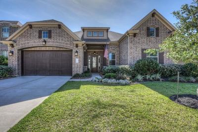 Conroe Single Family Home For Sale: 1010 Carissa Holly Drive