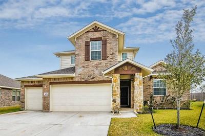 Rosharon Single Family Home For Sale: 9935 Clear Diamond Drive