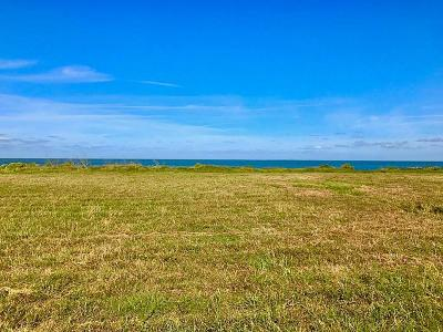Galveston Residential Lots & Land For Sale: 26834 Bay Water Drive Drive