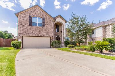 Conroe Single Family Home For Sale: 2209 Ivy Wall Drive