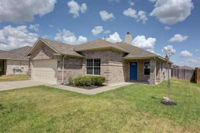 Bastrop TX Single Family Home For Sale: $200,000