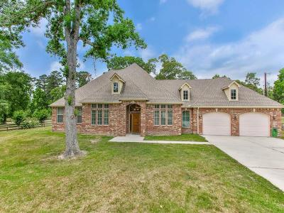 Single Family Home For Sale: 4176 Emmett Drive