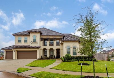 Sugar Land Single Family Home For Sale: 5811 Genoa Springs Lane