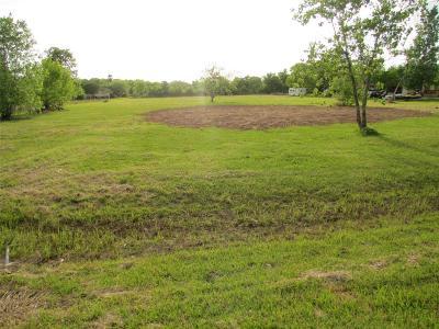 Rosenberg Residential Lots & Land For Sale: 919 Aurelia Lane