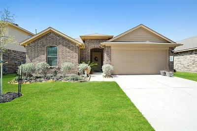 Tomball Single Family Home For Sale: 9710 Paloma Creek Drive