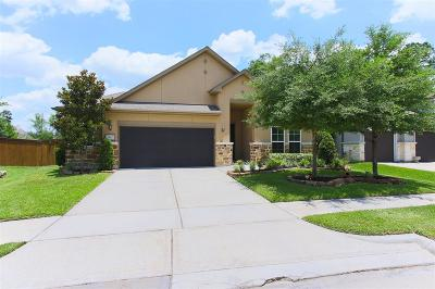 Humble Single Family Home For Sale: 7467 Lynnbrook Falls Lane