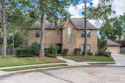 Houston Single Family Home For Sale: 2006 Firtree Way