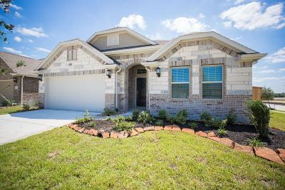 New Caney Single Family Home For Sale: 18815 Palmetto Hills Drive