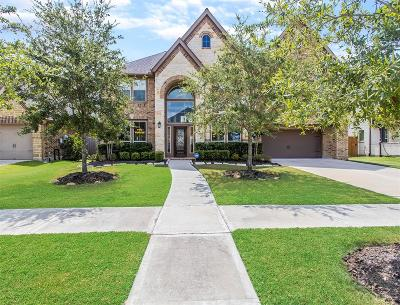 Sugar Land Single Family Home For Sale: 4115 Orchard Arbor Lane
