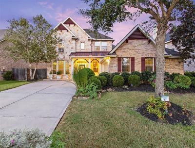 Sugar Land Single Family Home For Sale: 711 Doscher Lane