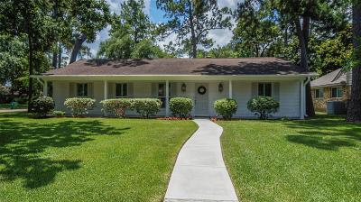 Houston Single Family Home For Sale: 10123 Hanka Drive