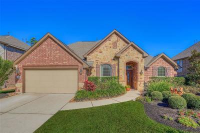 Spring Single Family Home For Sale: 25206 Gaddis Oaks Drive