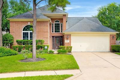 Houston Single Family Home For Sale: 17207 Canyon Stream Court