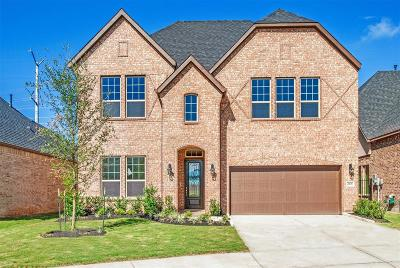 Sugar Land Single Family Home For Sale: 4906 Thunder Creek