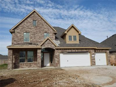 Single Family Home For Sale: 4234 Evergreen Drive