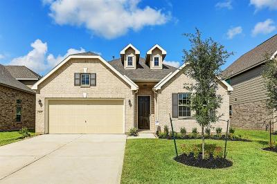 Rosenberg Single Family Home For Sale: 2627 Patricia Crossing