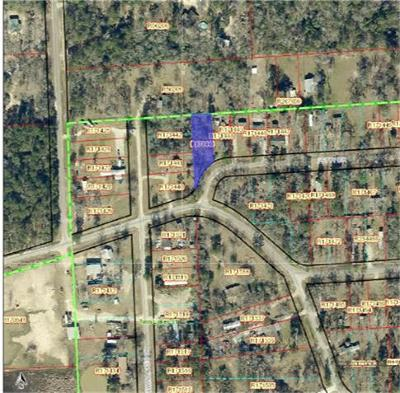 Conroe Residential Lots & Land For Sale: Petty Drive